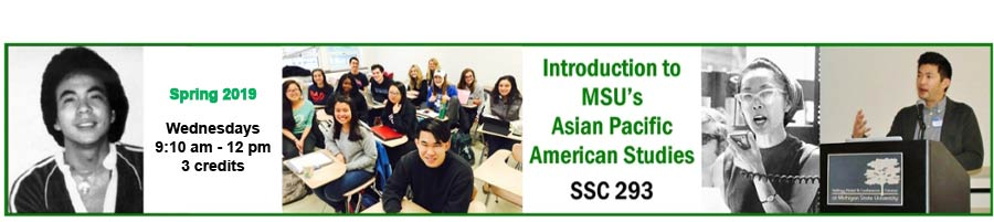 www.apastudies.ssc.msu.edu